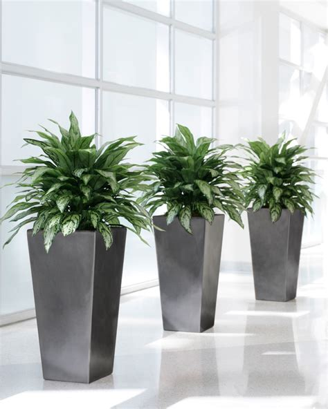 artificial plants home decor why artificial plantscaping is best for office and