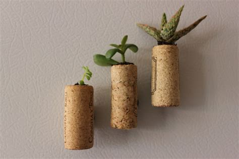 cork succulent planter green diy mini succulent wine cork planters sweet greens