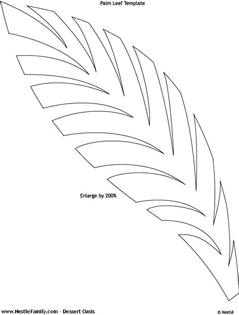 Palm Tree Leaves Outline palm tree leaves coloring pages coloring pages