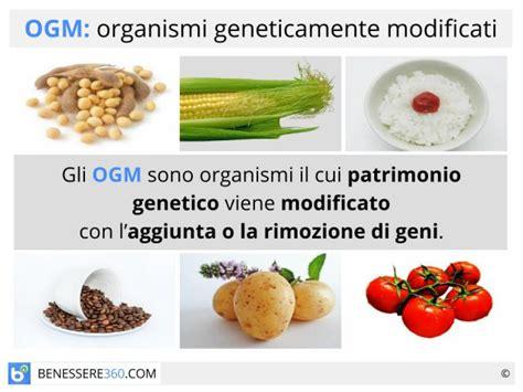 alimenti ogm ogm cosa sono pro e contro degli alimenti geneticamente