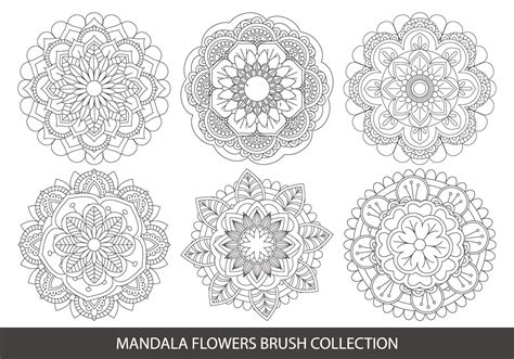 mandala templates for photoshop mandala flower brush collection free photoshop brushes