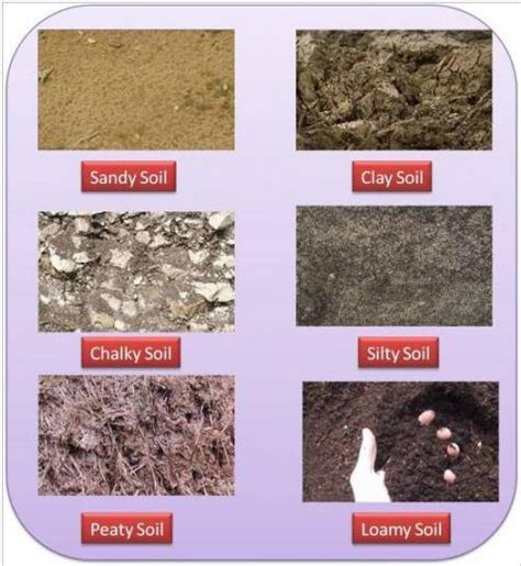 fiber soil fiber soil types of soil fiber optic basics features