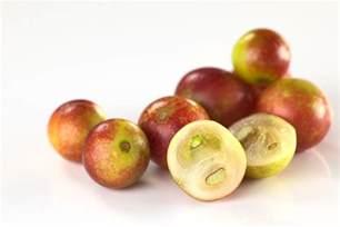 Fruit Of The Graviola Tree - camu camu powder extract by zokiva