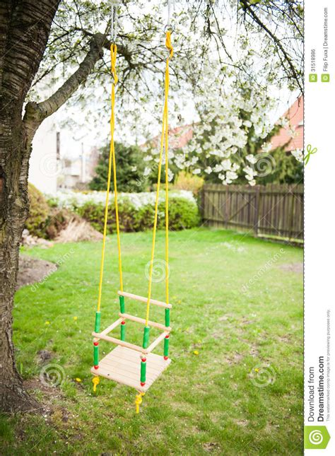 swing for tree branch tree swing royalty free stock image image 31518986