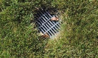 top 5 yard drain maintenance tips jb irrigation houston
