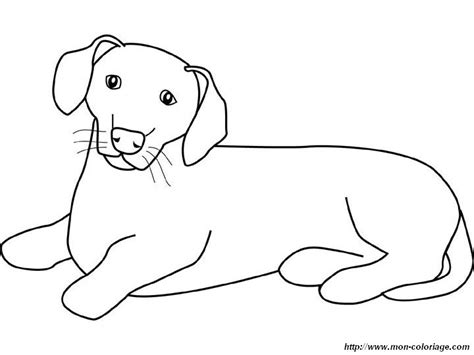 dachshund puppies coloring pages free a weiner dog coloring pages