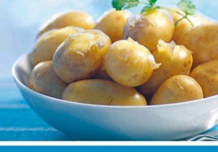cuisiner la pomme bien cuisiner la pomme de terre primeur sur gourmetpedia