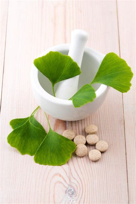 best ginkgo biloba supplements best 25 supplements ideas on vitamins