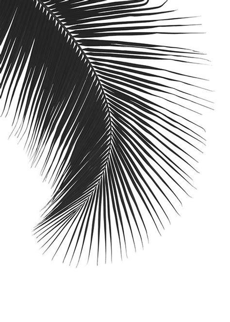 Poster Schwarz Weiß Mit Farbe by Die 25 Besten Ideen Zu Schwarz Wei 223 Fotos Auf