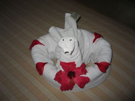 Origami Towel - cruise ship towel origami crafts