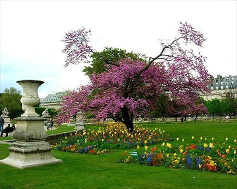 giardini della tuileries un italiano a parigi i giardini delle tuileries