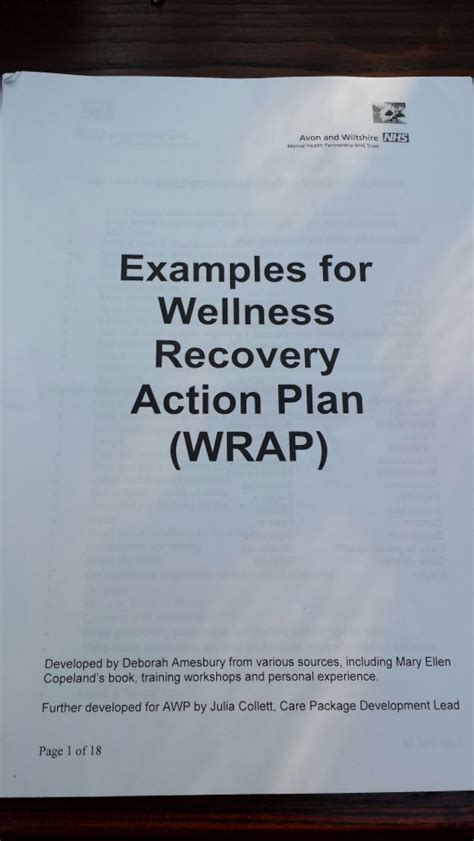 sle wrap wellness recovery action plan life after bpd