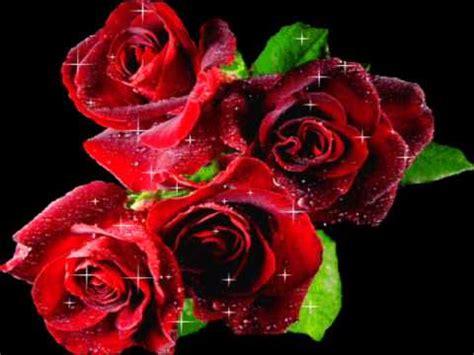 imagenes que se mueven flores que bonitas flores youtube