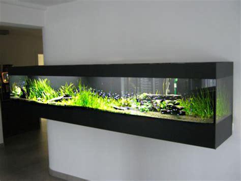 17 best images about plantas on pinterest los gatos los 17 acuarios m 225 s sorprendentes para instalar en casa