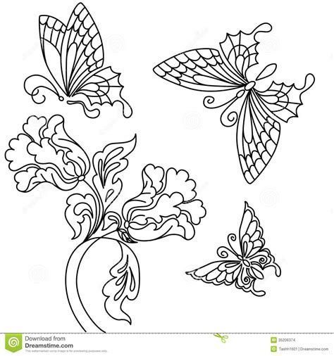 Flowers And Butterfly Stock Images  Image 35206374 sketch template