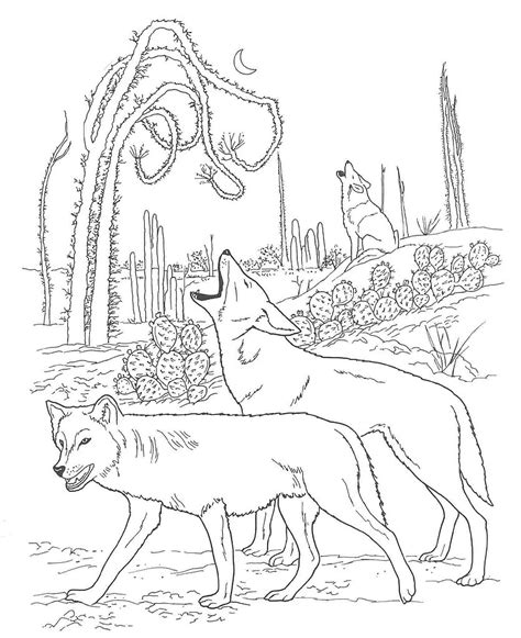 free desert landscape coloring pages