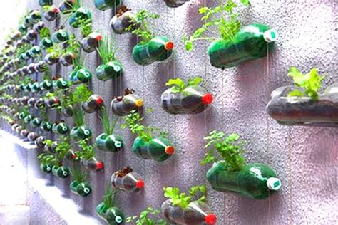 1000 images about plastic bottle recycling on pinterest