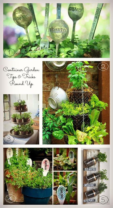 garden tips garden design 26299 garden inspiration ideas