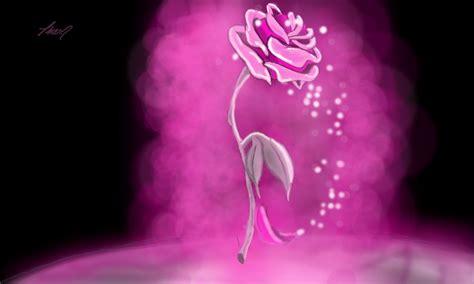enchanted roses enchanted rose