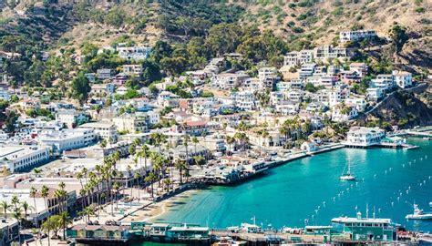 bed and breakfast catalina island 100 catalina island visitors guide catalina leading tourism operator on
