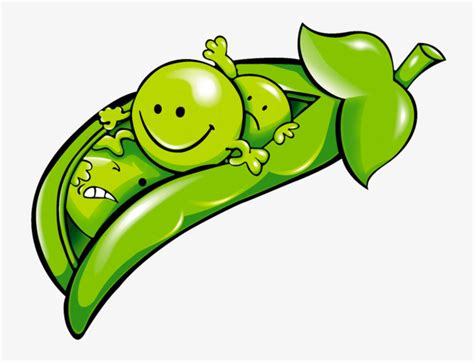 peas clipart peas clipart pea png image and