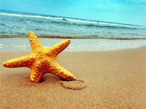 Pasir Pantai lukisan pemandangan holidays oo