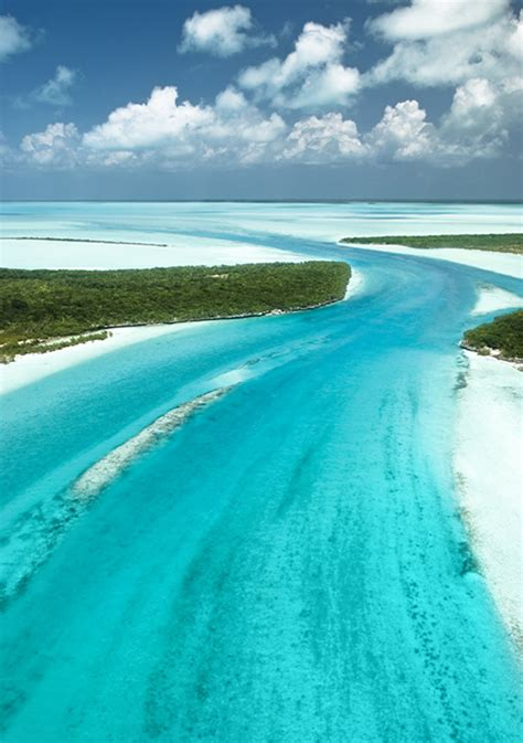 free bahamas bahamaslanding free cruise trip to bahamas bahamas