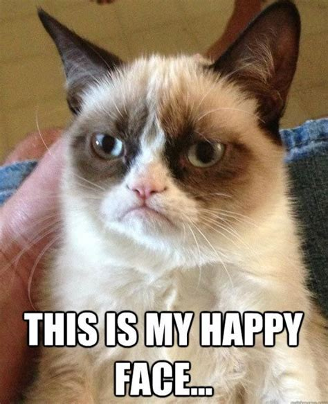 Grumpy Cat Meme Happy - 3856 best images about grumpy cat for love of grumpy