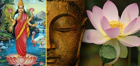lotus flower hindu the sensible symbolism of the lotus flower in hinduism and