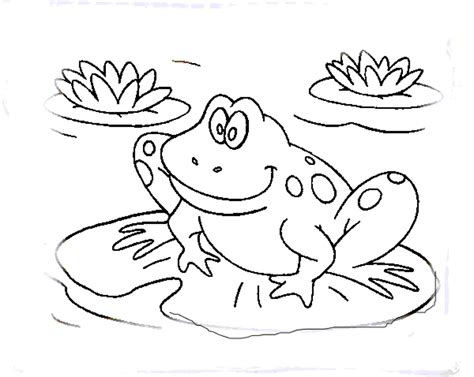 coloring pictures of tree frogs nice coloring picture of a frog 4 1587