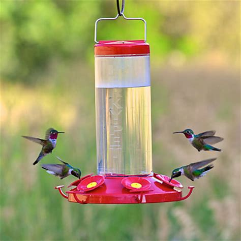 perky pet 174 grand master large capacity hummingbird feeder