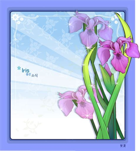 iris flower frame vector