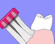 imagenes medicas gif gifs animados de dientes animaciones de dientes