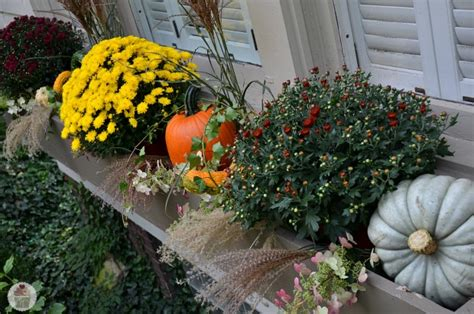 Decorations For Window Boxes by Decorating Fall Window Boxes Hoosier