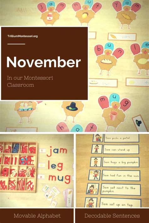kindergarten themes for november 228 best seasonal november fall harvest leaves