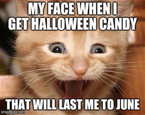 Halloween Cat Meme - excited cat meme imgflip