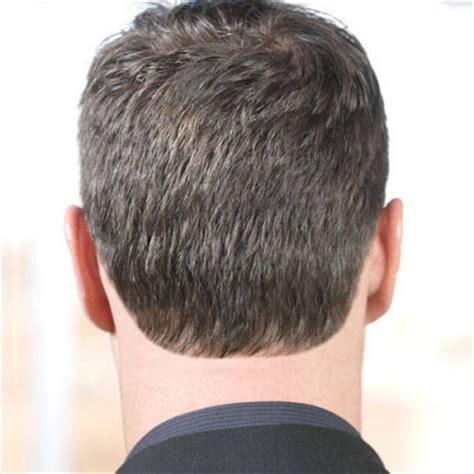 rounded back hair cut agosto 171 2010 171 dia internacional del hombre