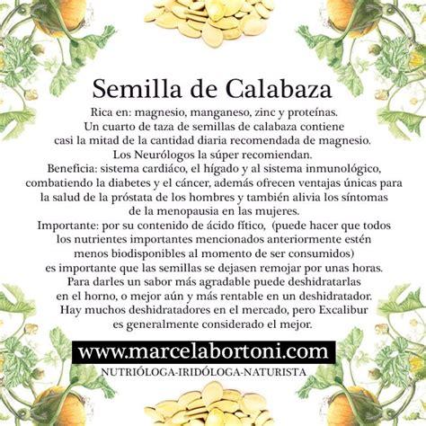 Dieta Detox Español by Semilla De Calabaza Nutrici 243 N Avanzada
