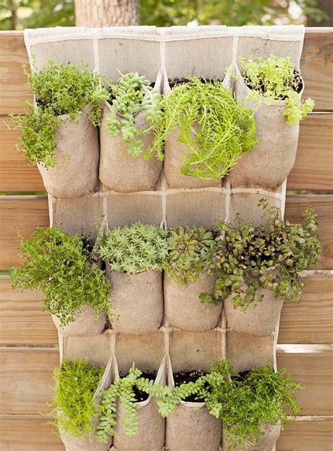 Dijamin Wall Planter 6 Kantong 17 ide kreatif bikin kebun sayur di rumah sendiri