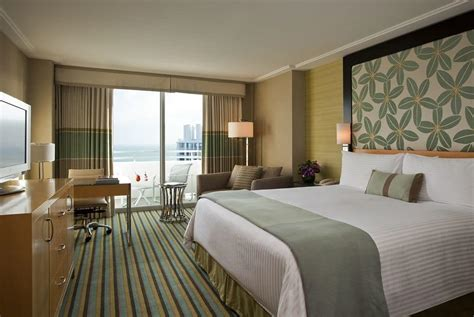 miami hotel rooms loews miami hotel cheap hotel rooms at discounted price at cheaprooms