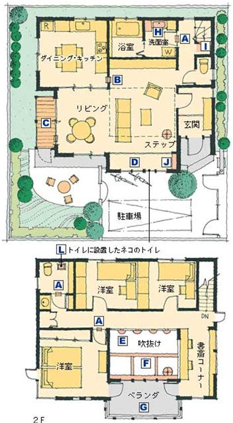 cat friendly house design cat house designs