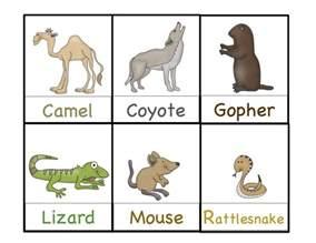 animals pictures printable desert animals printable preschool printables