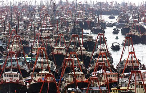 commercial fishing boat definition book review overfishing the fisheries blog