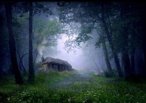 A Cottage In The Woods by Cottage In The Woods Scotland Bored Panda