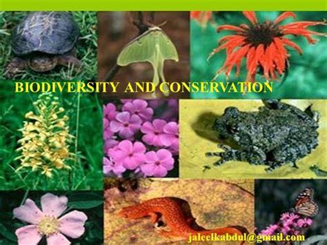 Biodiversity Conservation Authorstream Biodiversity Ppt Template Free