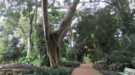 Botanical Gardens Hawaii Oahu Wahiawa Botanical Garden A 27 Acre Tropical Park In
