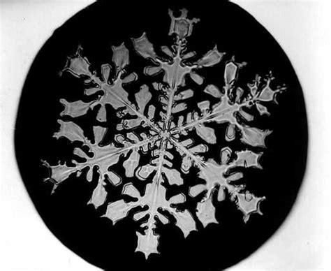 Bentley S Snowflakes Snowflakes Bilberrybox