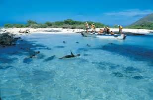 islands vacation galapagos ecuador luxusn 237 z 225 jezdy za golfem a pot 225 pěn 237 m best golf and diving