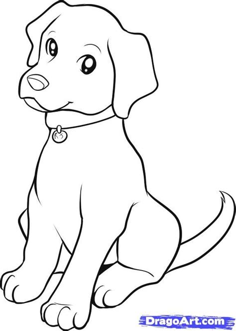 drawing of a puppy best 25 drawing tutorial ideas on