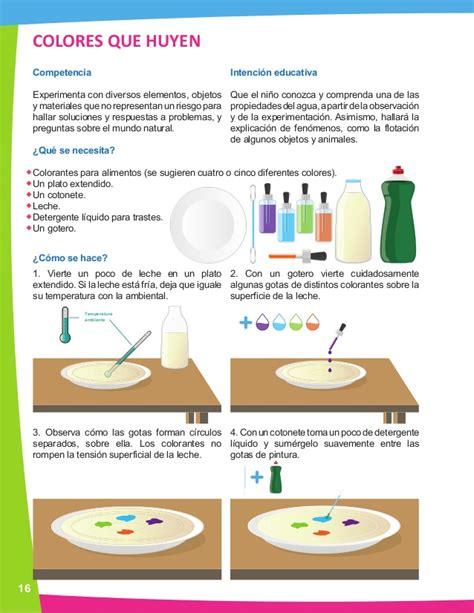 Experimento Apio Agua Y Colorante L L L L L L L